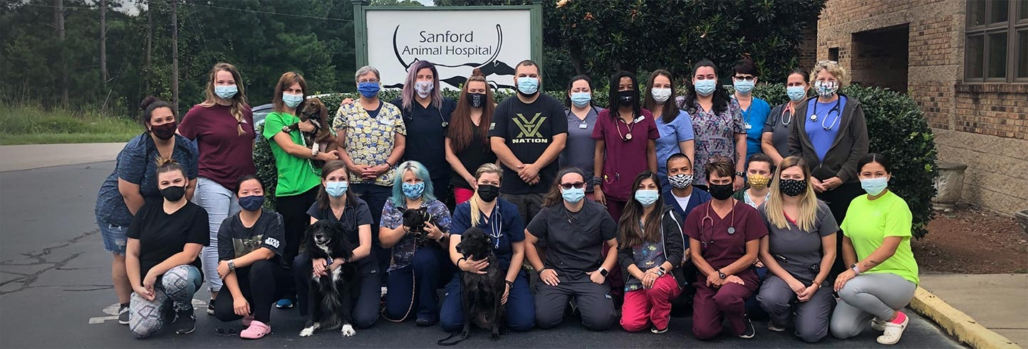 Sanford veterinary hospital