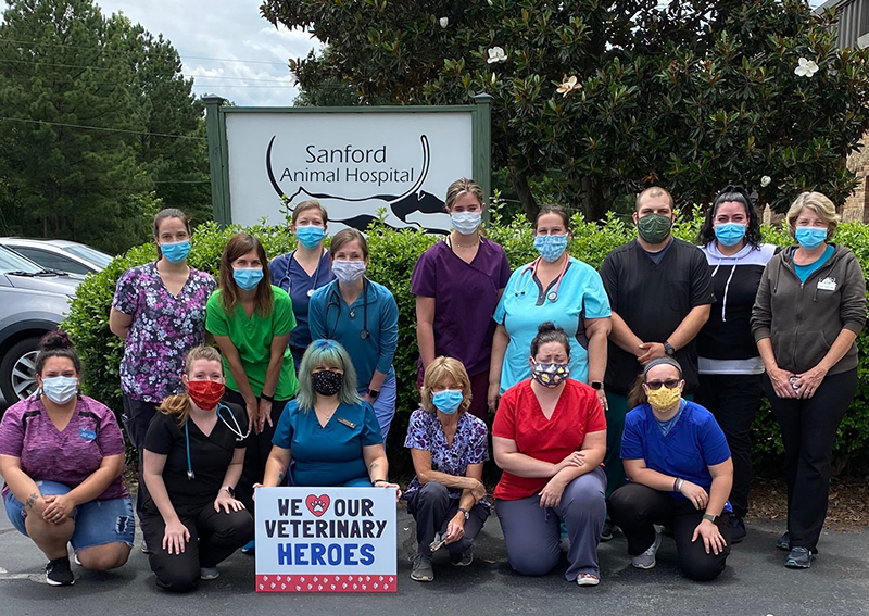 Team Veterinary Care, Sanford